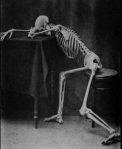 Bored Skeleton